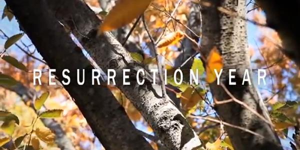 Video Resurrection Year