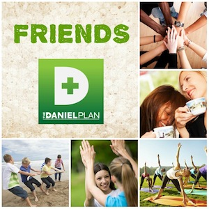 The Daniel Plan — Friends